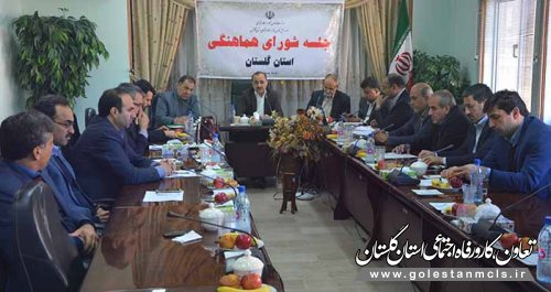 شورای هماهنگی دستگاه های تابعه وزارت  تعاون،کار و رفاه اجتماعی در استان گلستان برگزار شد.