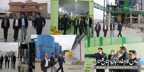 بازدید مدیرکل تعاون،کار و رفاه اجتماعی گلستان از چند تعاونی در گنبد / گزارش تصویری