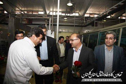 مدیرکل تعاون،کار و رفاه اجتماعی گلستان: اقتصاد مقاومتی، استفاده از دسترنج کارگر ایرانی است.